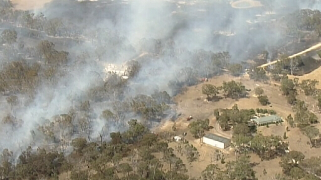 The blaze took hold in grass and scrub land. (9NEWS)