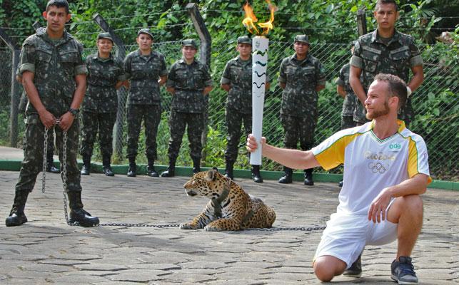 The jaguar shortly before it was shot, (AFP)