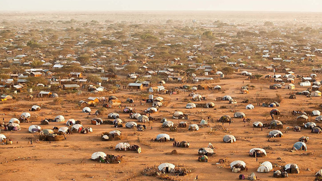 Around 300 babies are born every day in Dadaab camp.