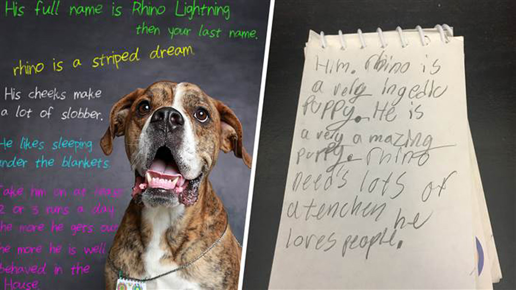 Boy leaves heart-breaking note for new owners of surrendered dog