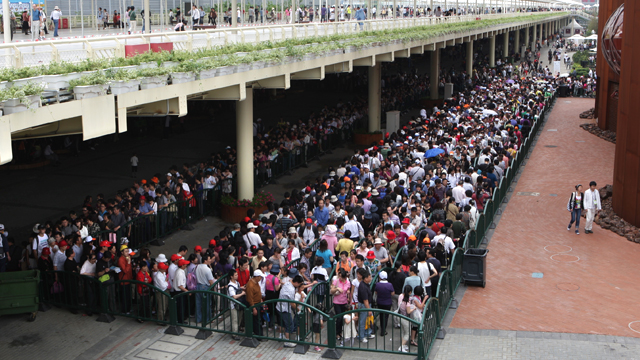 Why wait when you can jump the queue? Study proves we are just meek sheep
