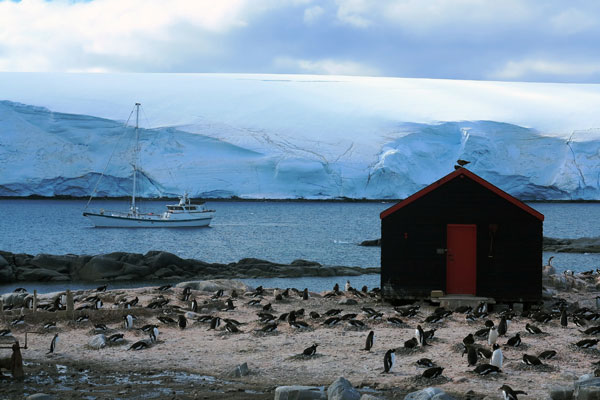 Applications have closed for britain 39 s antarctic post office for Port lockroy