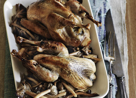 Pot-roasted guinea fowl with chestnut stuffing