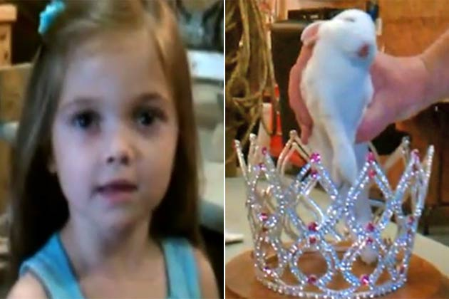 <i>Toddlers and Tiaras</i> star gets her dead bunny stuffed