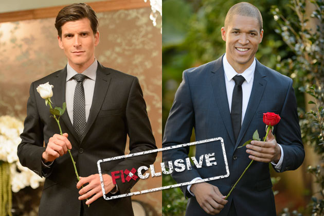 EXCLUSIVE: Osher Gunsberg gets dating advice from new Aussie Bachelor Blake