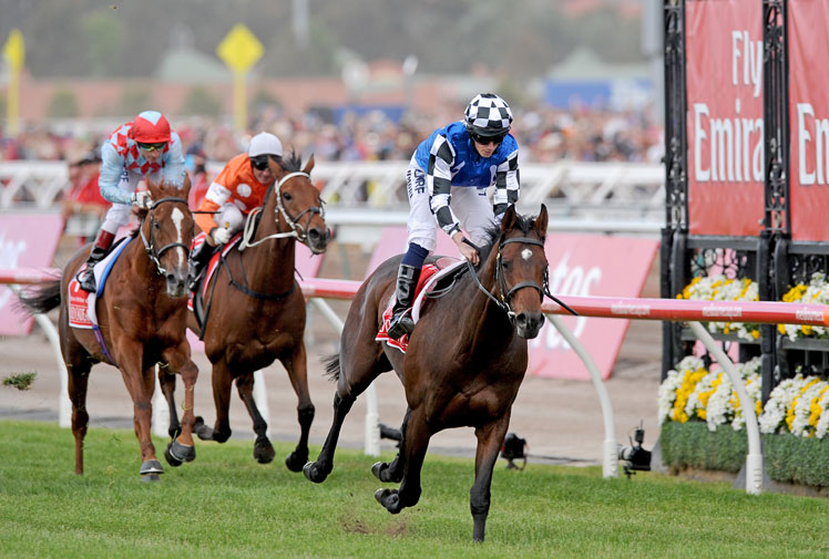 <b>Protectionist has won the Melbourne Cup, completing an international clean sweep of Australia's richest spring races.</b><br/><br/>In beating a brave Red Cadeaux and Who Shot Thebarman, Protectionist delivered Germany's first Melbourne Cup win. <br/><br/>However, the race had a tragic end with favourite, Japanese stayer Admire Rakti, dying and another horse, Araldo, fighting for its life.<br/><br/>The sad news tarnished a Cup day that had started in typically glamorous fashion, with some of the country's biggest stars stealing the limelight. <br/><br/>