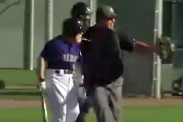 Elderly baseball fan confronts pitcher