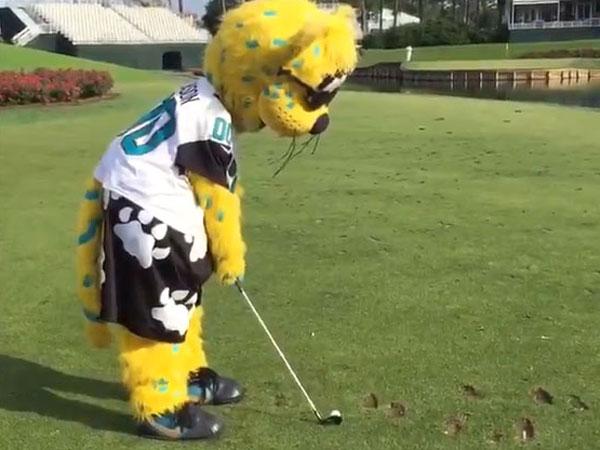 NFL mascot shows off hidden talent