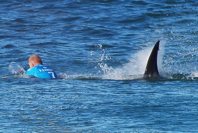 It just goes to show how unlucky Mick Fanning was.