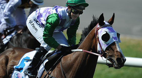 Aussie Jockey Michelle Payne Stood Down After Positive Drug Test