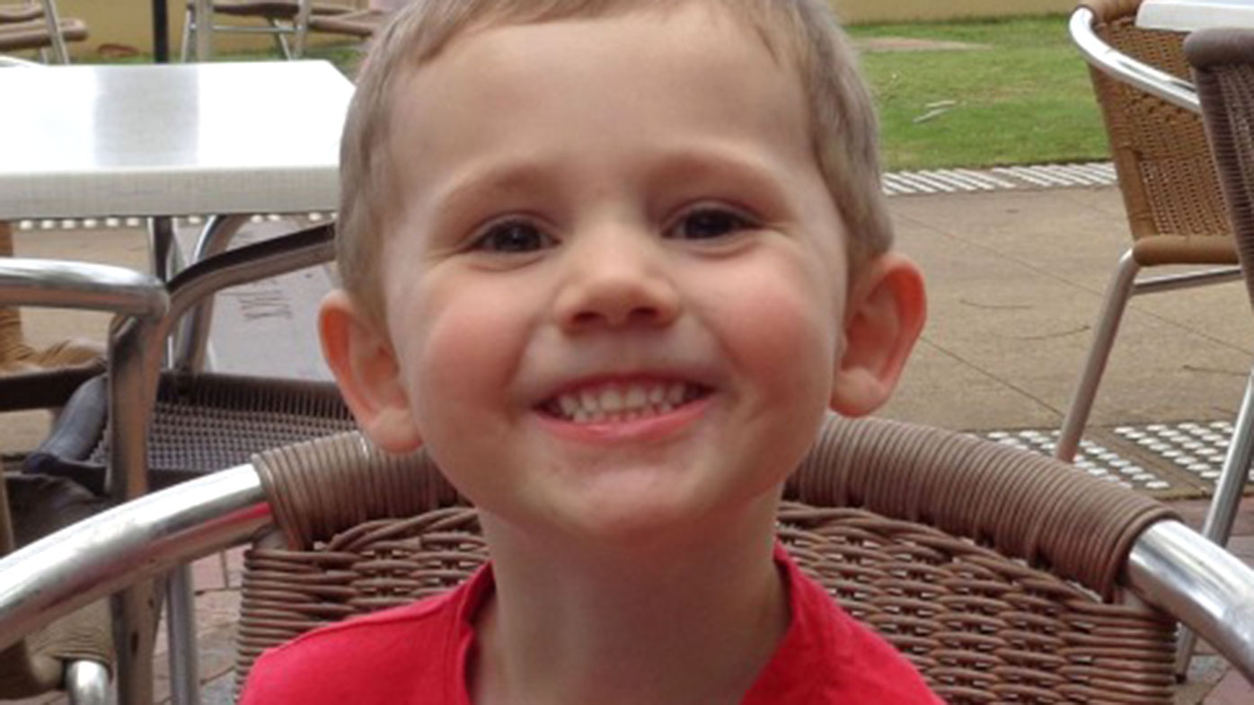 William Tyrell disappeared from his grandmother's home on September 12 last year. (Supplied)