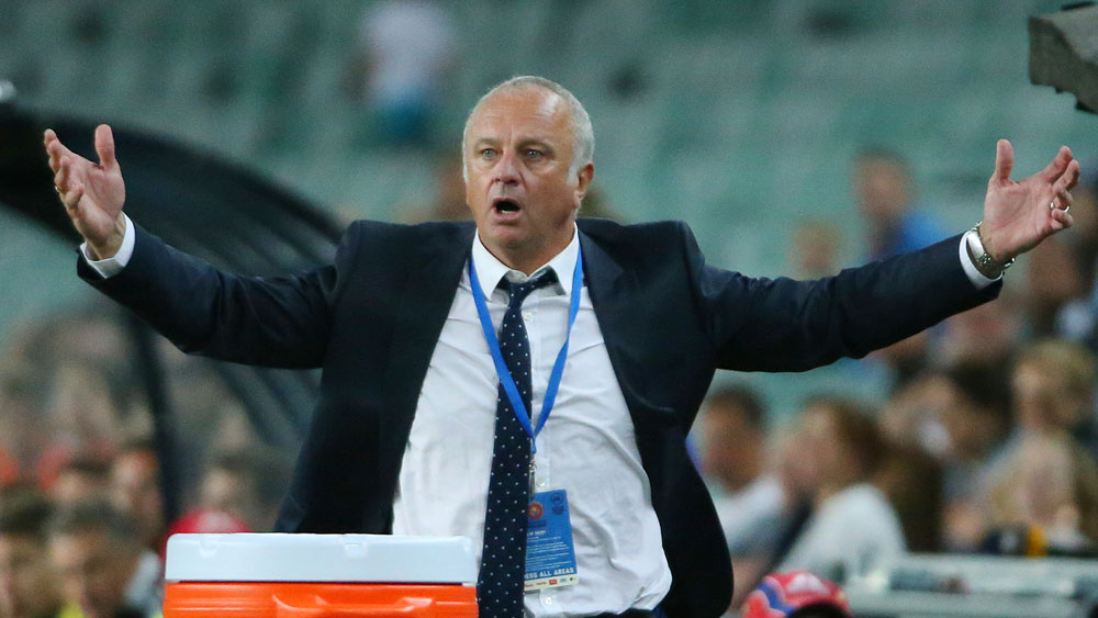 Graham Arnold has campaigned for extra officials. (AAP)