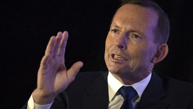 Abbott's office dismisses comeback report