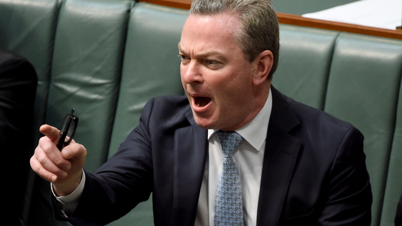 Christopher Pyne, the leader of the house for the Government. (AAP)