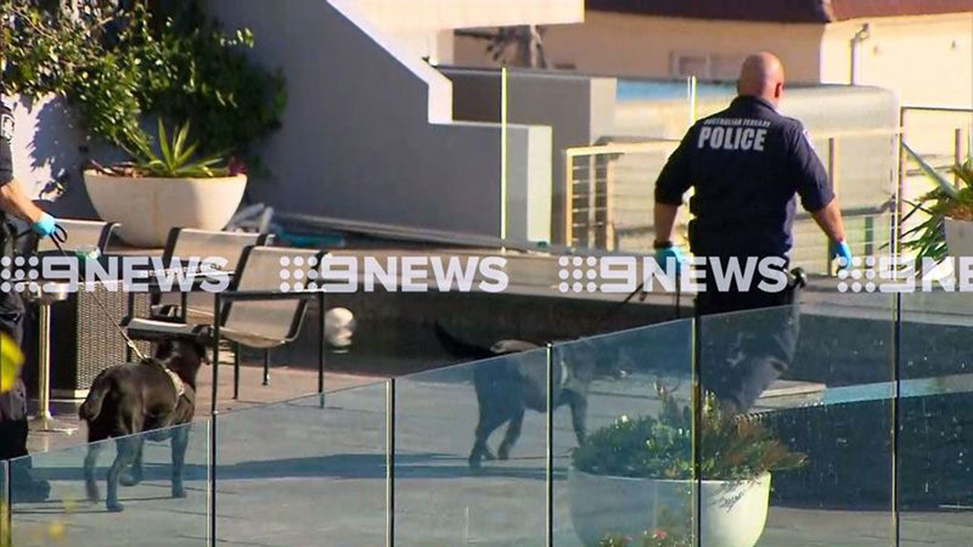 Police swooped on John Ibrahim's Dover Heights home early Tuesday morning.