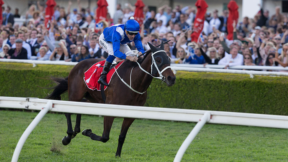 Champion mare Winx remains one of 48 horses in contention for the Cox Plate at Moonee Valley.