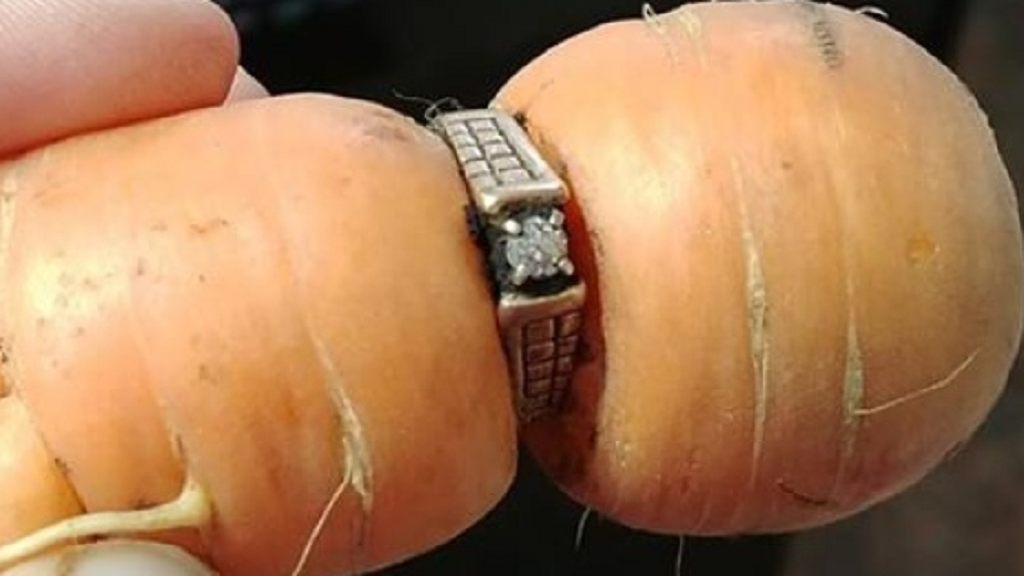 Woman finds missing ring on carrot