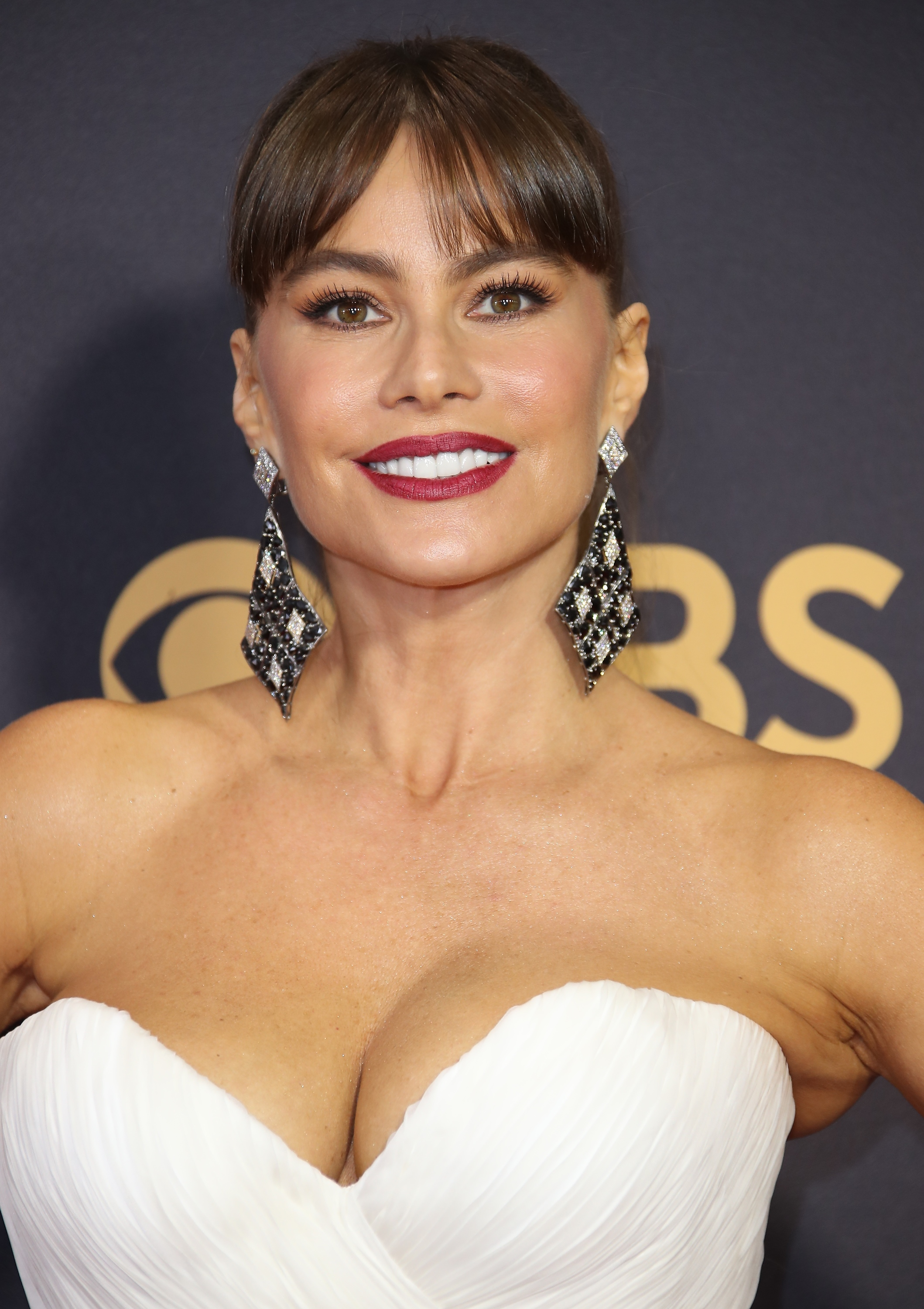 "<p><em>Modern Family </em>star Sofia Vergara made a show-stepping entrance on the red carpet at <a href=""http://style.nine.com.au/2017/09/18/08/21/style_emmy-awards-2017-red-carpet"" target=""_blank"">this year's Emmy Awards </a>in a show-stopping Mark Zunino gown, but it was her luminous makeup and sleek hair that made the biggest impression.</p> <p>The actress swept up her long hair and blunt bangs into a elegant high-ponytail, the perfect complement to match her bold mauve-coloured lip and glowing skin. </p> <p>Despite the Emmys   delivering <a href=""http://style.nine.com.au/2017/09/18/15/30/style_best-and-worst-emmy-looks"" target=""_blank"">a diverse red carpet</a> in the sartorial stakes, the awards are equally about celebrating the boldest and bravest beauty looks.</p> <p>In fact, there were so many amazing looks we simply cannot choose the one we love best. So instead, we're bringing them all.</p> <p>Click through to see the best beauty looks from the 2017 Emmy Awards.</p>"