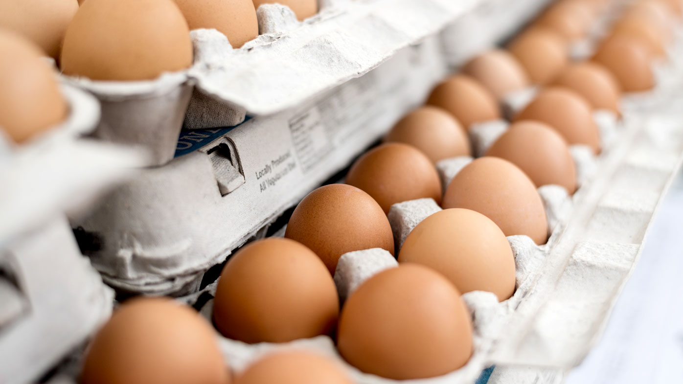 Everything you ever wanted to know about eggs (and more)
