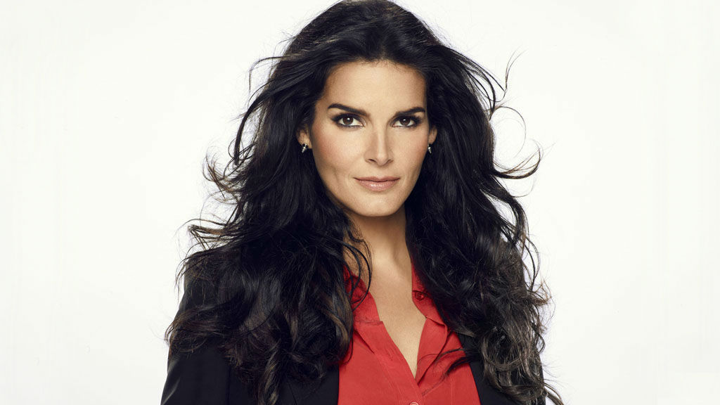 Angie Harmon Law And Order Cast Hairstyle Galleries For