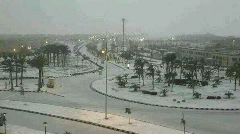 The extremely rare precipitation seems out of place amid Cairo's many palm trees. (Imgur)