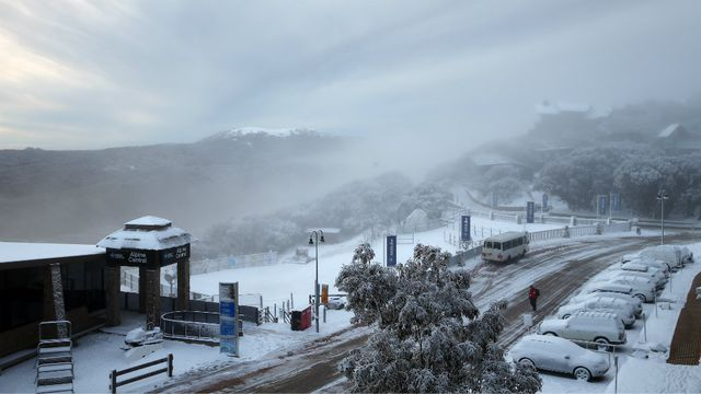 Snowfall at Victoria's Mount Buller. (Getty)
