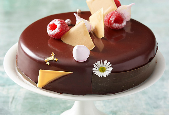 Chocolate and raspberry entremets