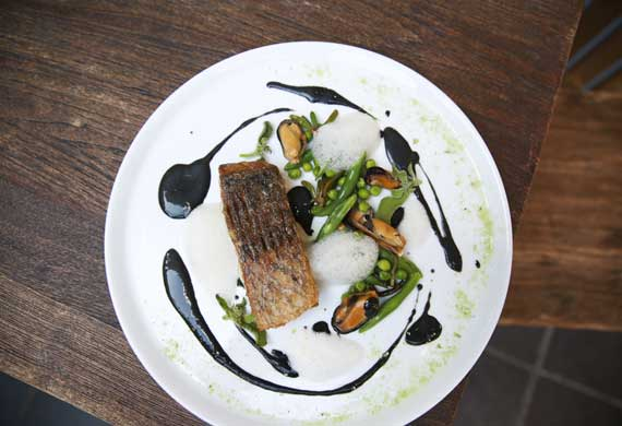 Matthew Butcher's pan roasted barramundi, with mussels and black basil emulsion