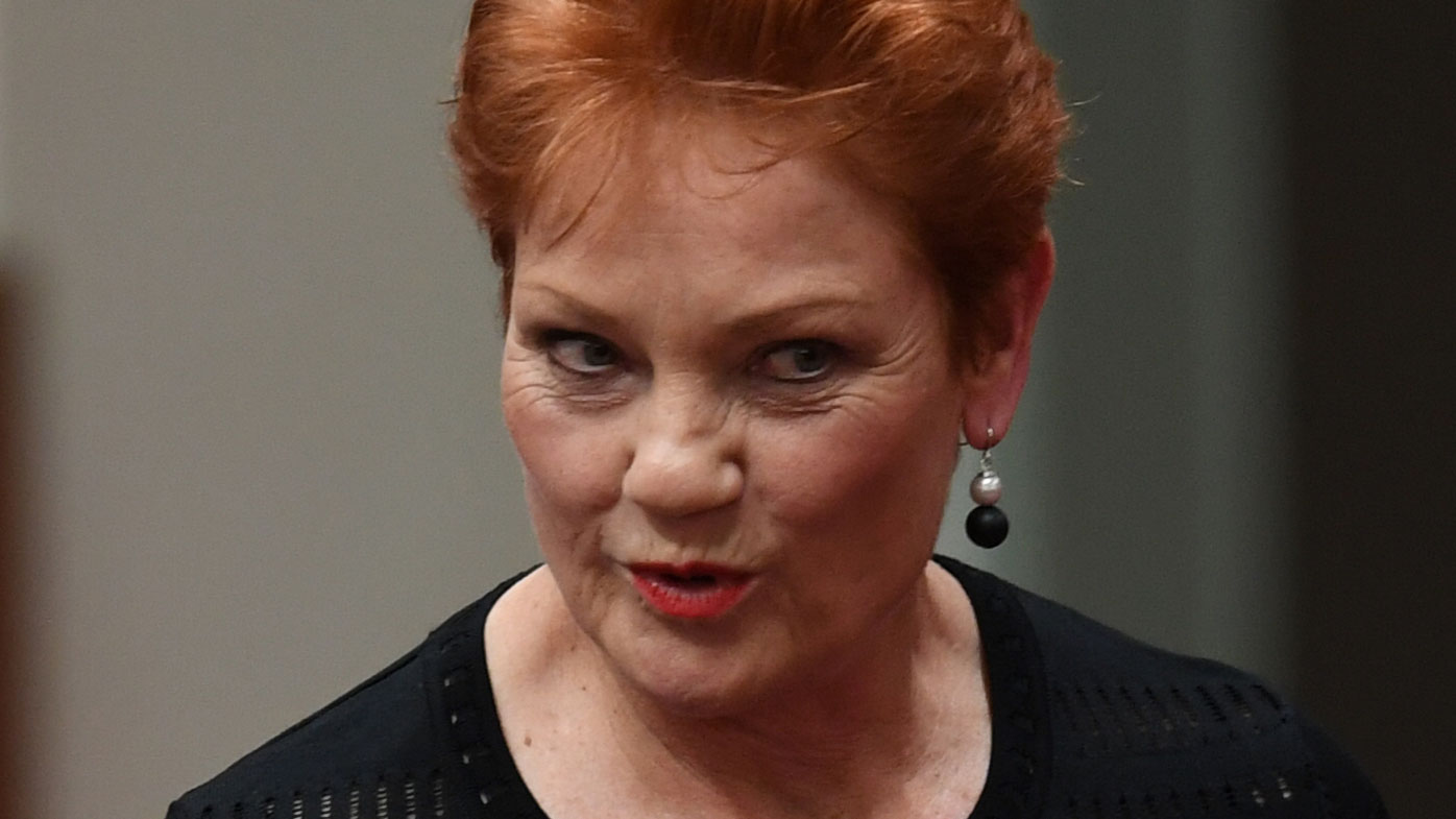 Greens senator blames Hanson for next terror attack