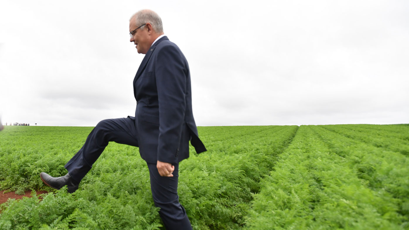 The federal election campaign trail in pictures
