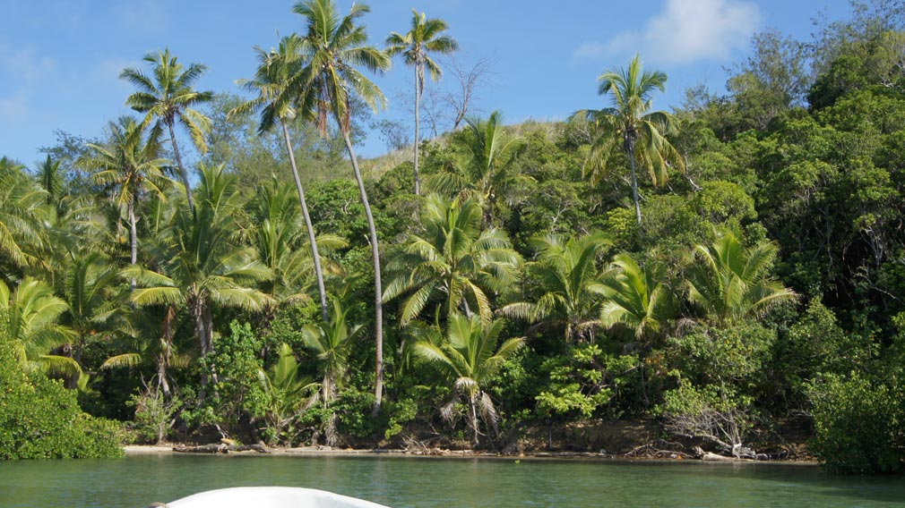 Chinese developers 'destroy reef, rainforest' to build Fiji-first casino