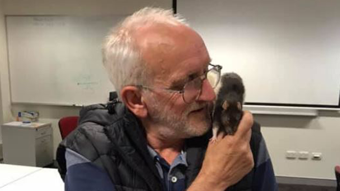 Homeless man Chris reunited with beloved pet rat Lucy in Sydney