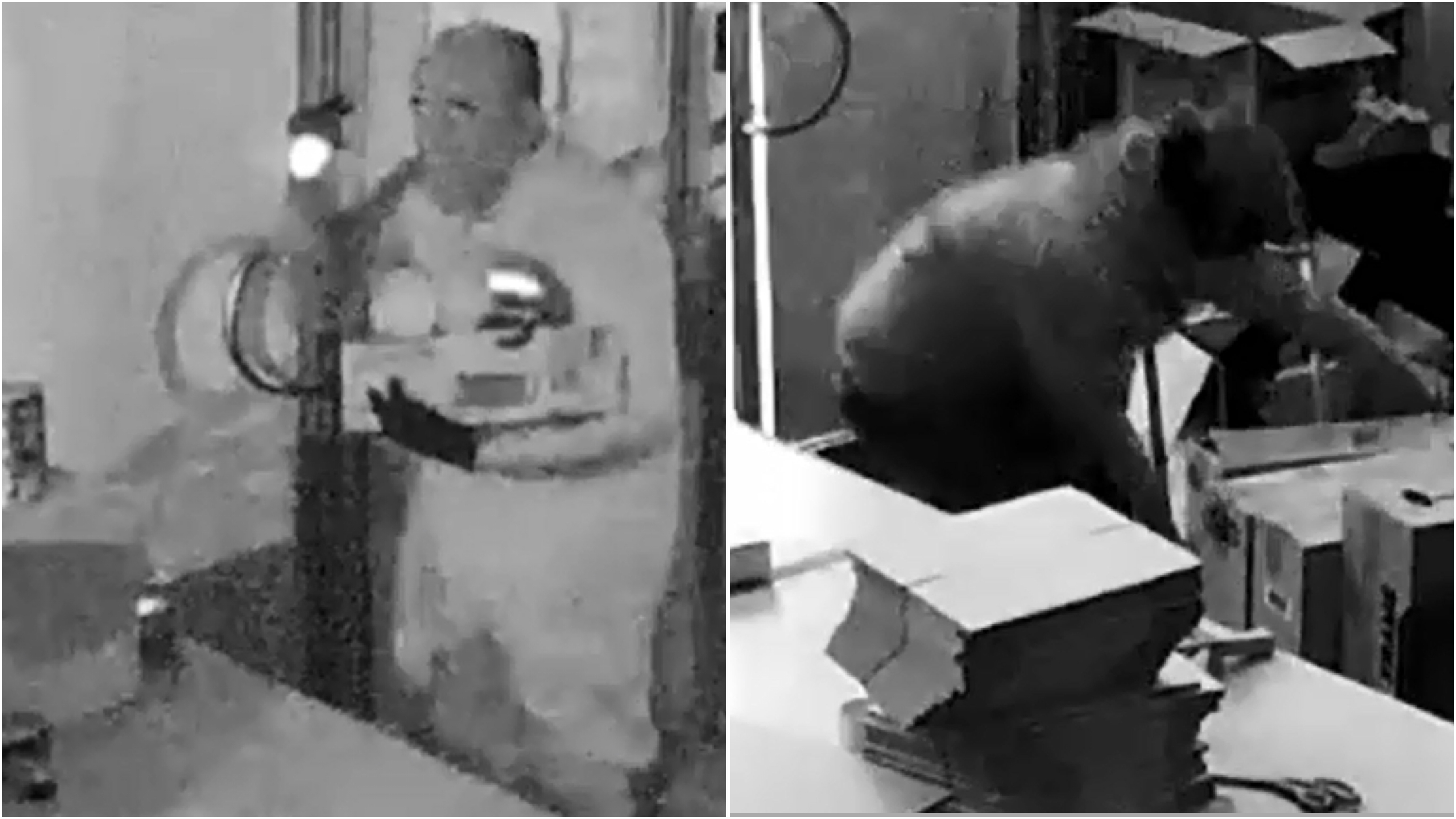 Baby formula thieves targeting Melbourne businesses