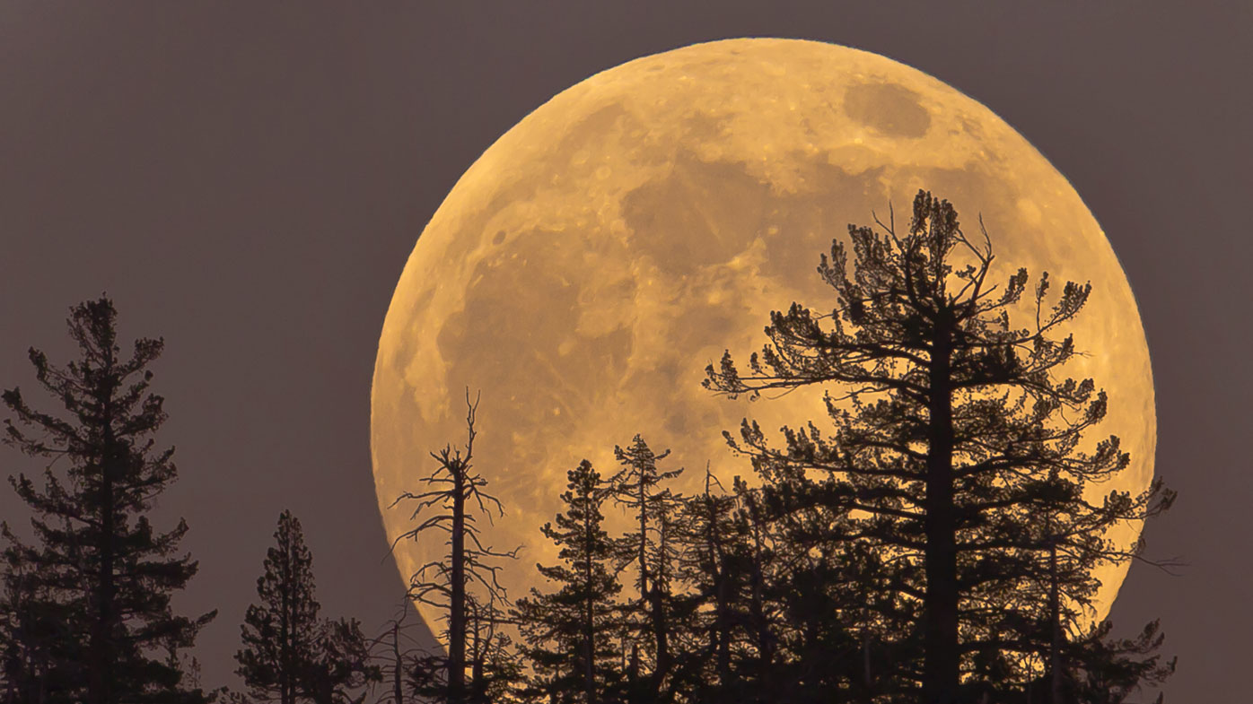 Supermoon, March 2019: How to see the Worm Moon – satmu