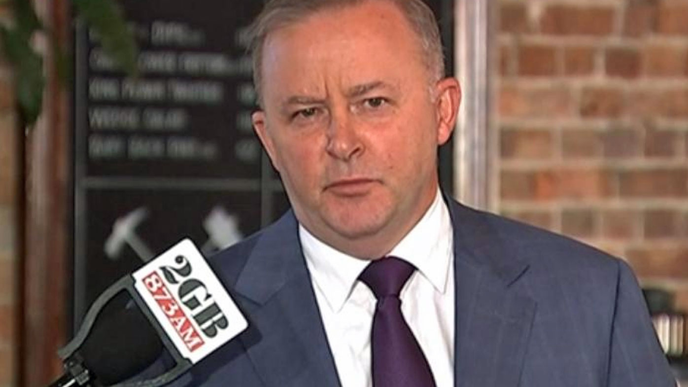 Anthony Albanese nominates himself as next Labor leader