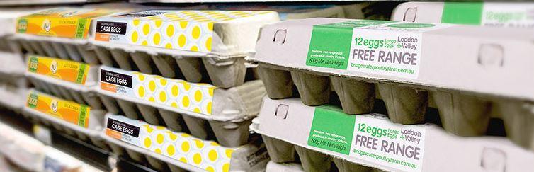 Salmonella concerns as eggs recalled