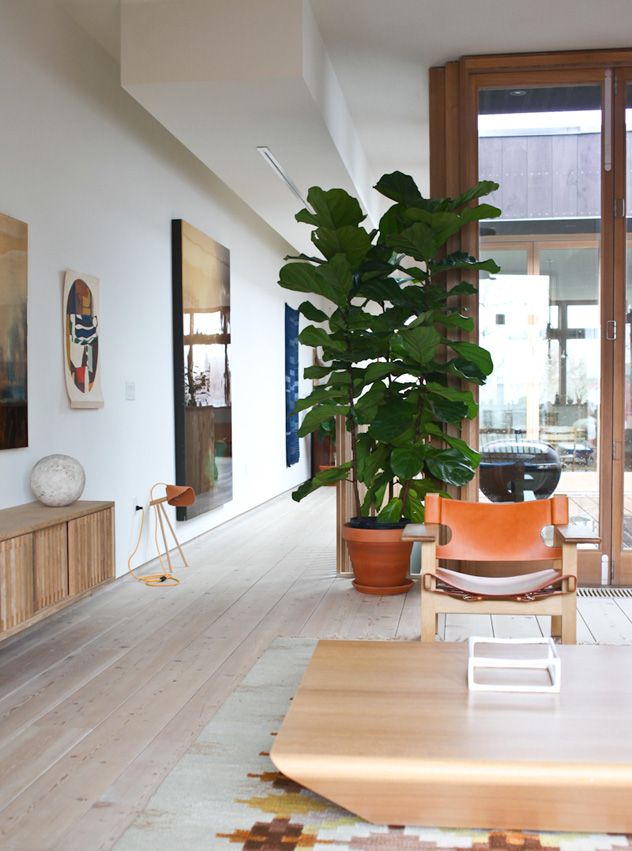 How To Keep An Indoor Tree Alive Homes - Big indoor plants