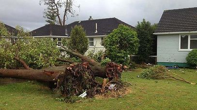 The aftermath of the tornado outside a west Auckland home.