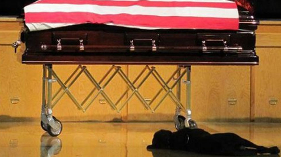 A loyal dog keeps a vigil beside his fallen owner.