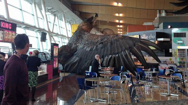 A 2-tonne eagle with a wingspan of 15m promoting the Hobbit trilogy has fallen from the ceiling of Wellington Airport during the quake. (Facebook/Karamea M Swindells-Wallace)