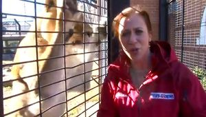 Marie Waxel gets a scare from Una the lioness. (WAFF-TV)