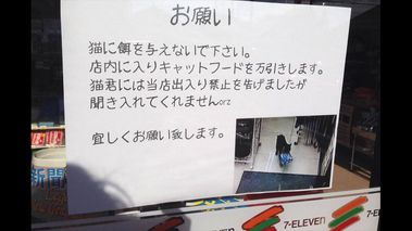 Poster warns patrons of Japanese 7-Eleven about 'shoplifting' cat (Twitter/@mememe_sh)