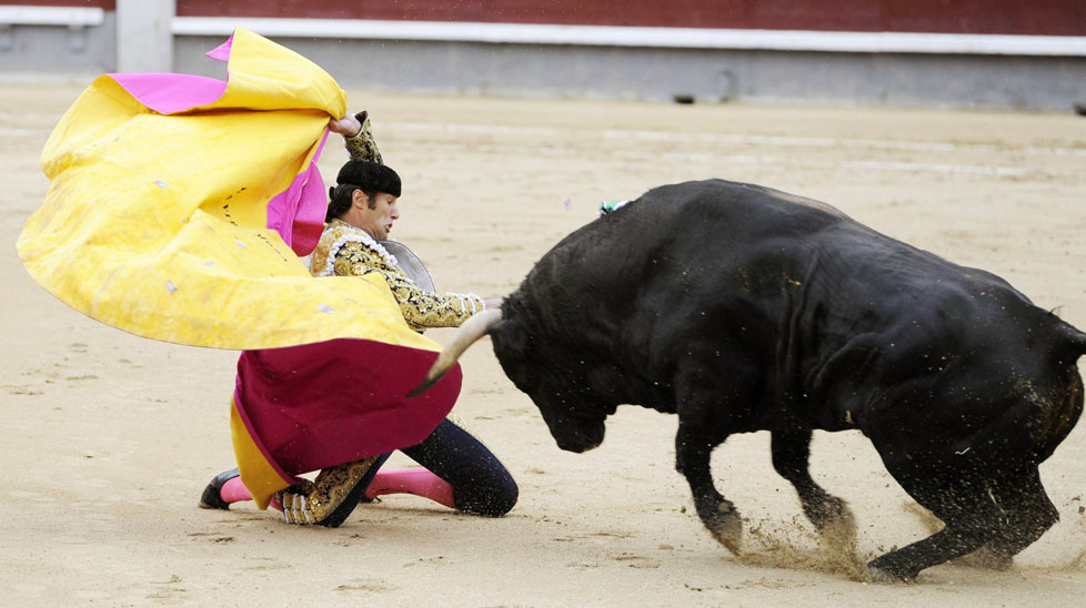 Bullfight called off after matadors gored