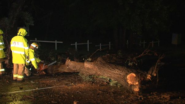 The SES has warned people to beware of downed power lines, trees and storm debris. (9NEWS)