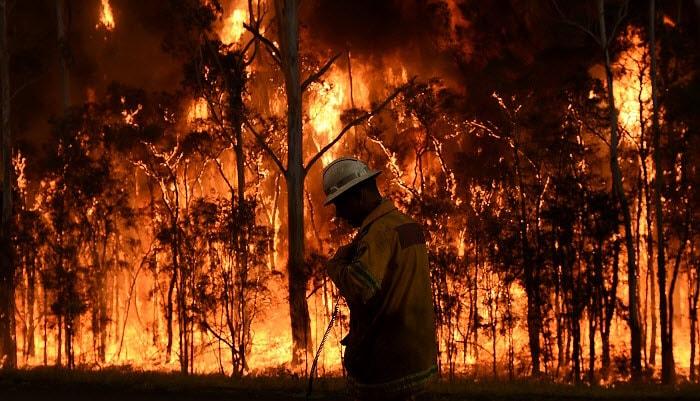 Bushfires news alerts