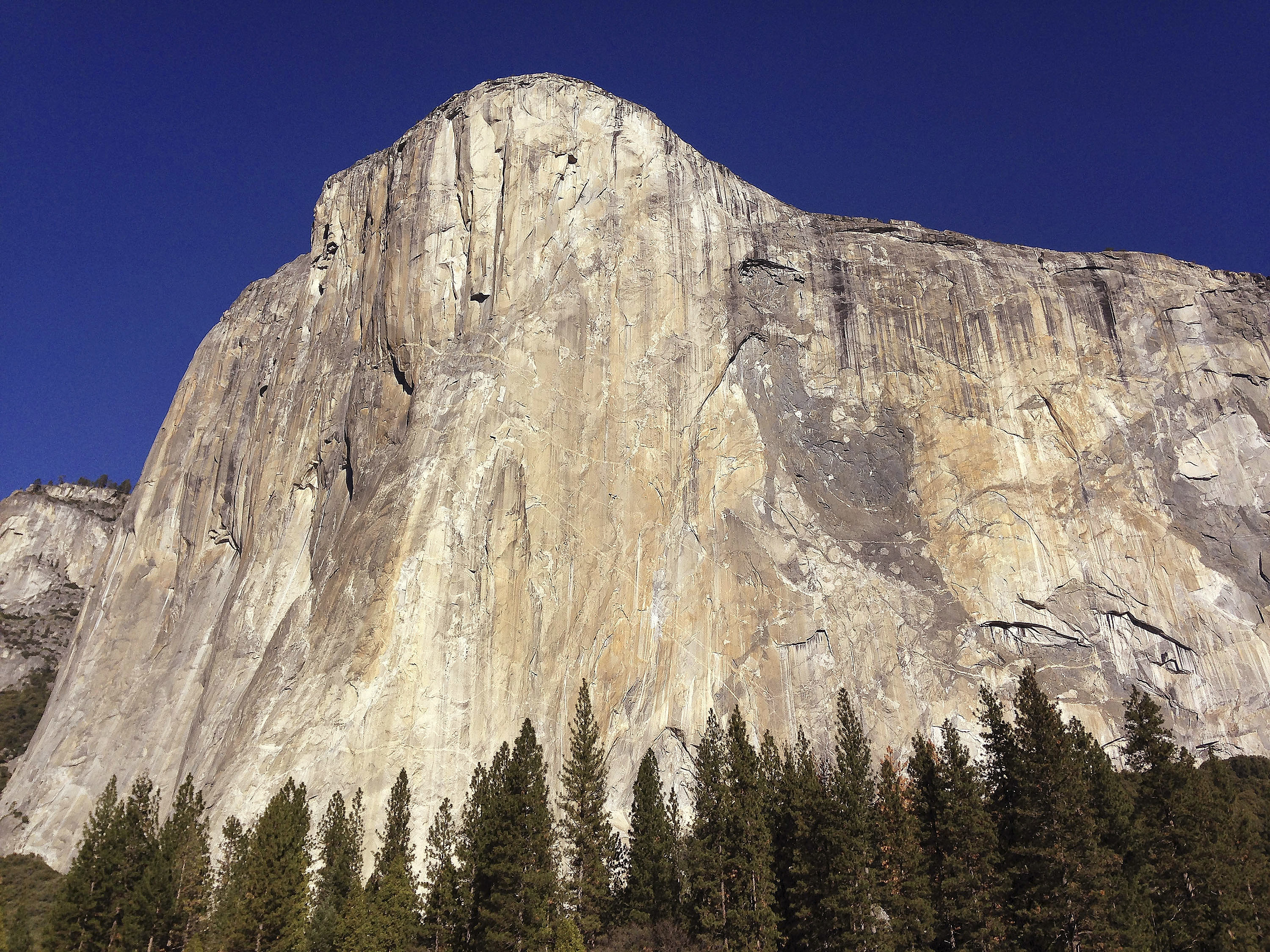Yosemite National Park: Man and woman fall to deaths from