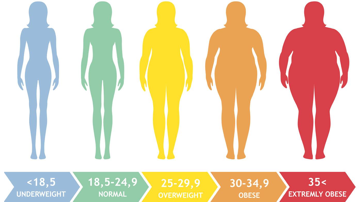 你的BMI標準是什麼呢?