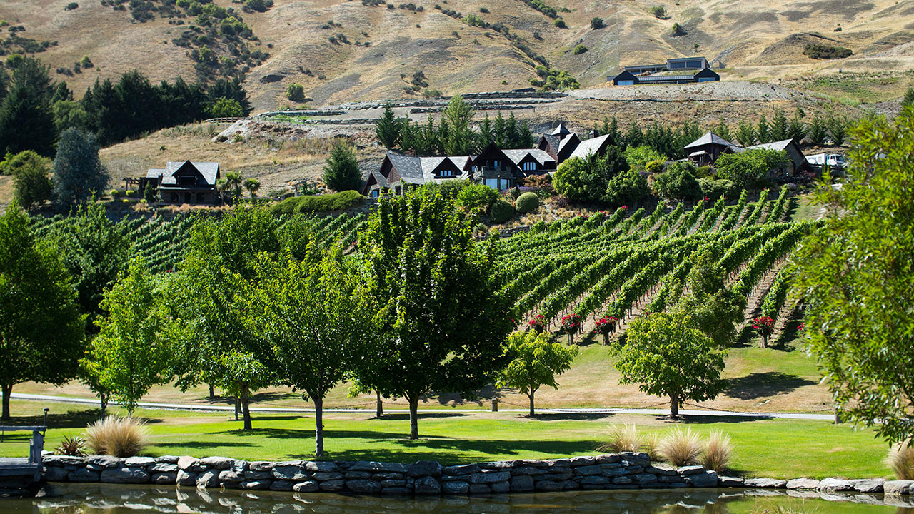 Craig and Andy married at the Stoneridge Estate vineyard.