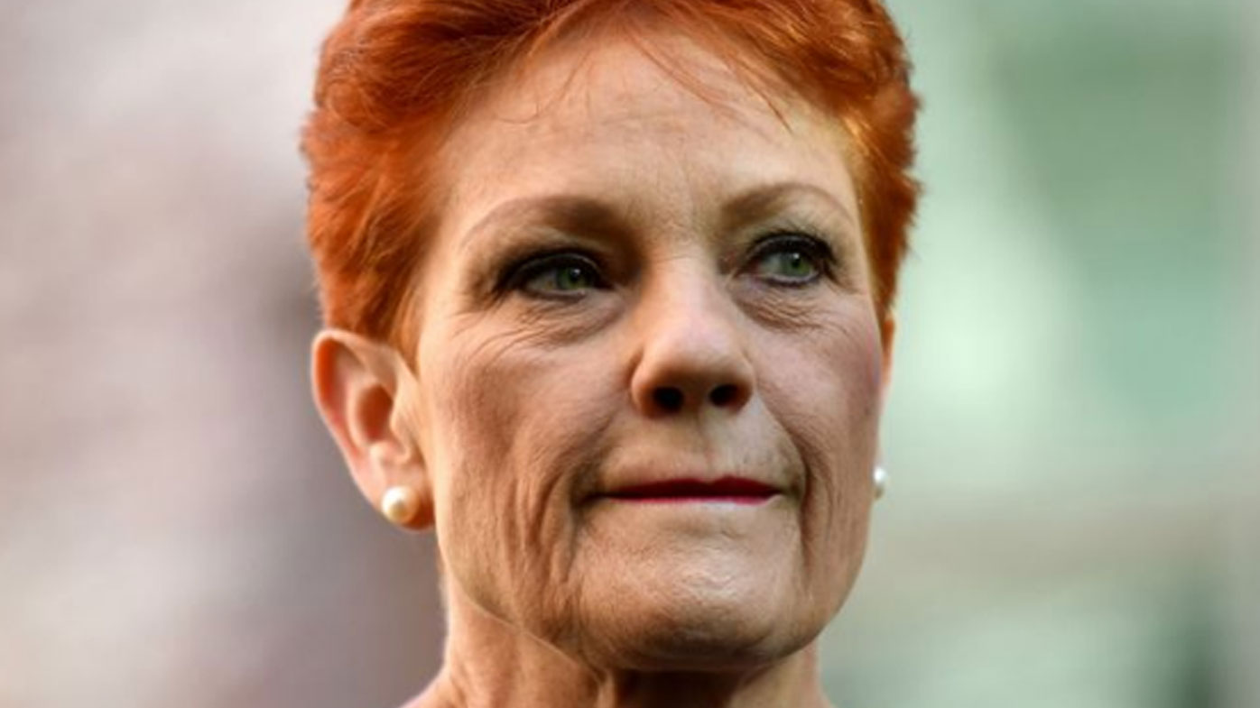 Pauline Hanson banned from Twitter