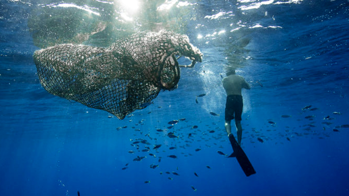 A man swims near a ghost net in the Great Pacific Garbage Patch.